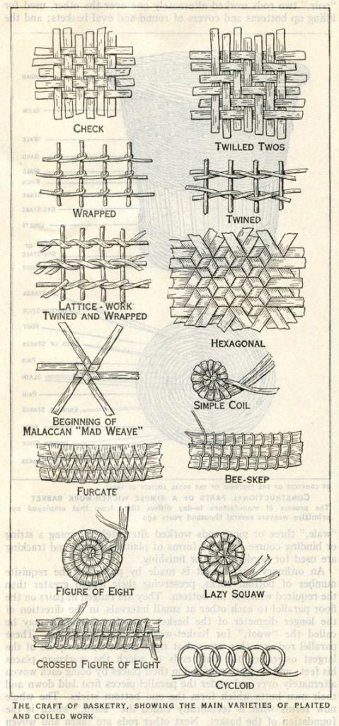 Bamboo patterns
